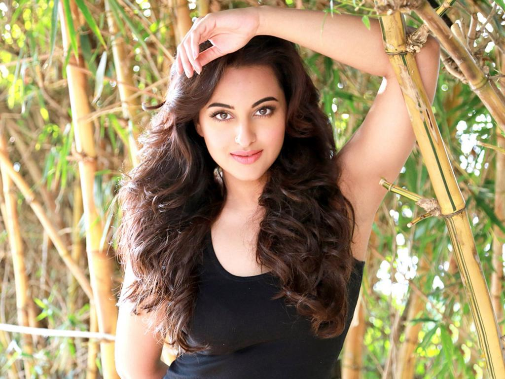 Sonakshi Sinha Beautiful HD Wallpaper