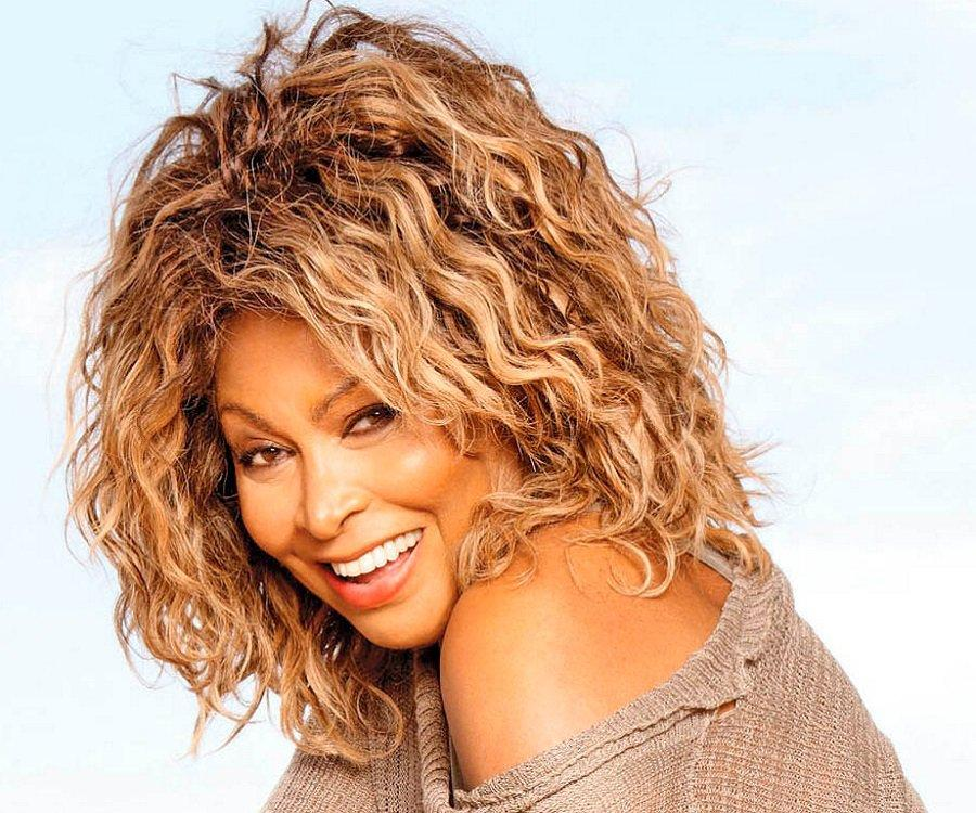 Tina Turner Biography - Childhood, Life Achievements & Timeline
