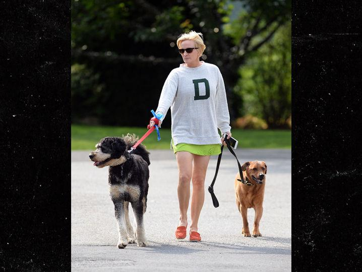 MSNBC's Mika Brzezinski Carefree Walking Her Dogs After Trump's Bashing