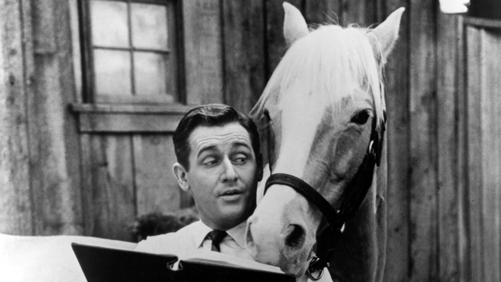 Alan Young,    Mister Ed '  Star, Dies at 96