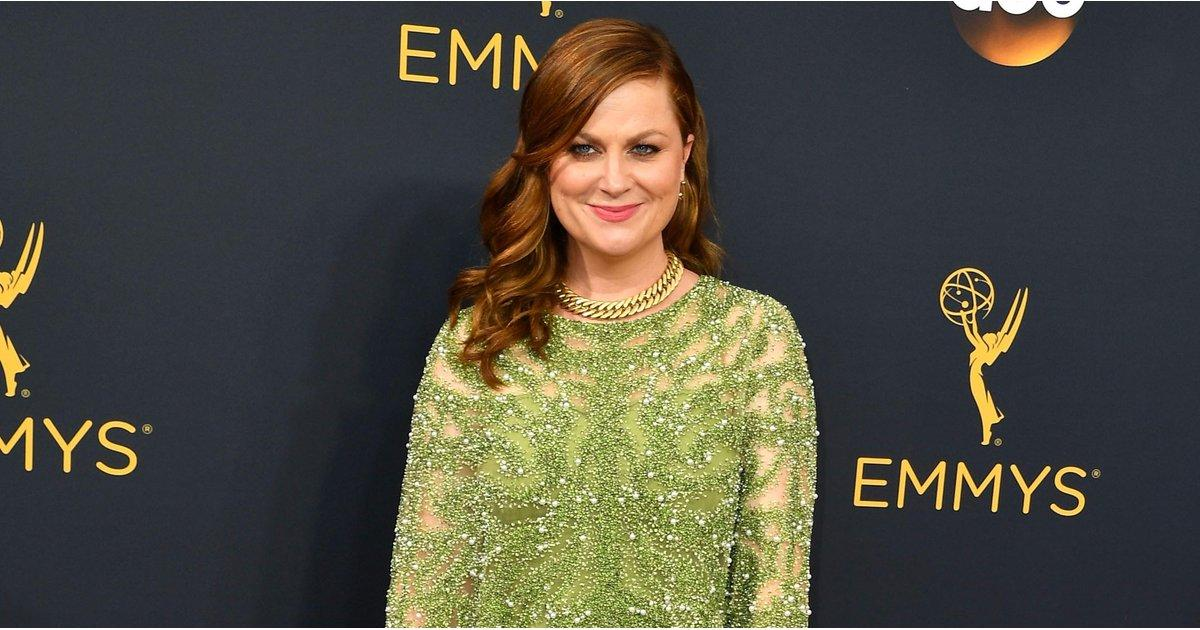 Amy Poehler Has a New Boyfriend in Her Life