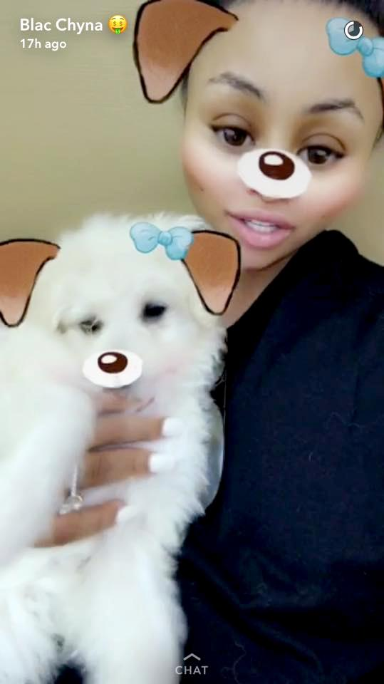 Blac Chyna Brings Home 2 New Dogs Just Days Before She       's Due to Welcome a Baby Girl