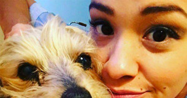 Gina Rodriguez Mourns the Death of Her Dog Ted: I'm ''in Com