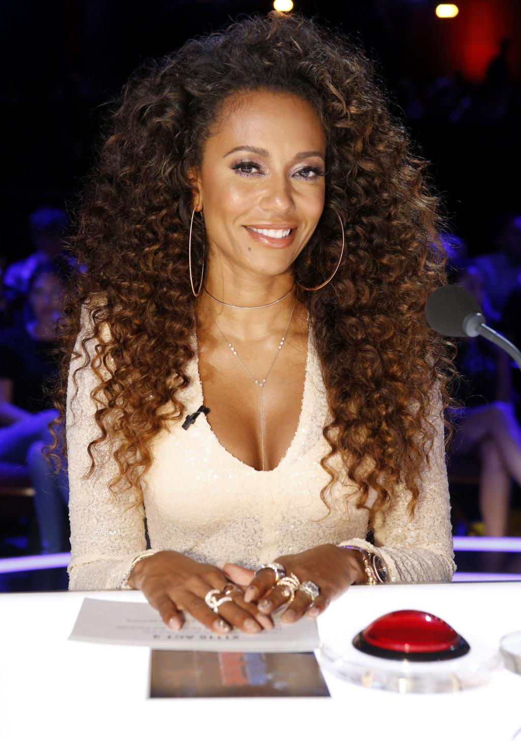Mel B Offers Hefty Reward to Catch Thief Who Allegedly Broke into Car:   'I Want This Guy Caught