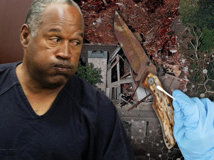 O.J. Simpson -- No DNA On Buried Knife