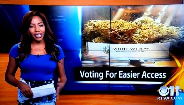 TV Reporter Who Quit Mid-Broadcast To Pursue Weed Legalization Now Faces 50 Years In Prison