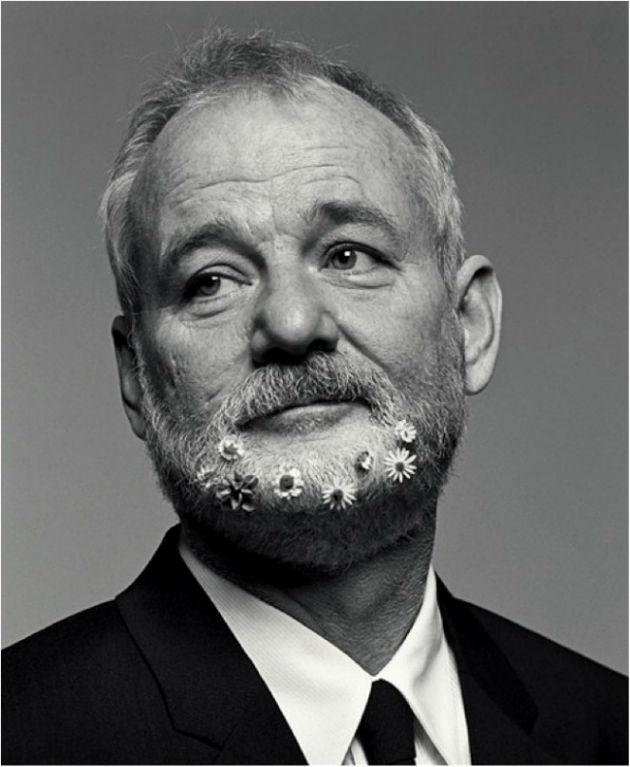 1000+ Images About Bill Murray On Pinterest   Bill Murray, Gilda