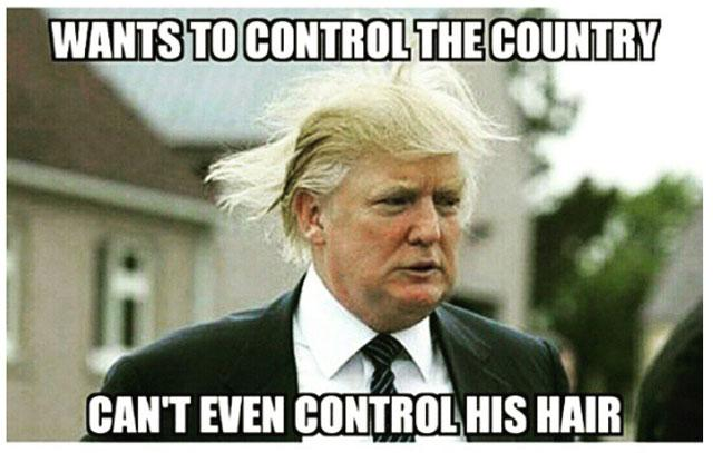 1000+ Images About FUNNY DONALD TRUMP On Pinterest   Donald Trump