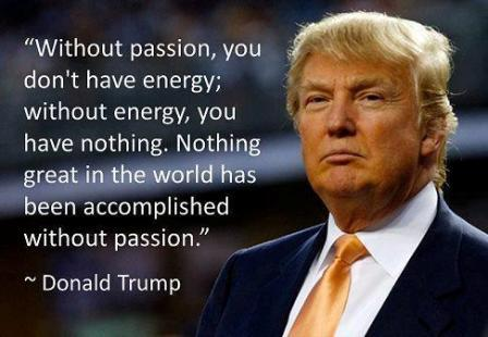 A Quotes, Donald Trump And Donald O'connor On Pinterest
