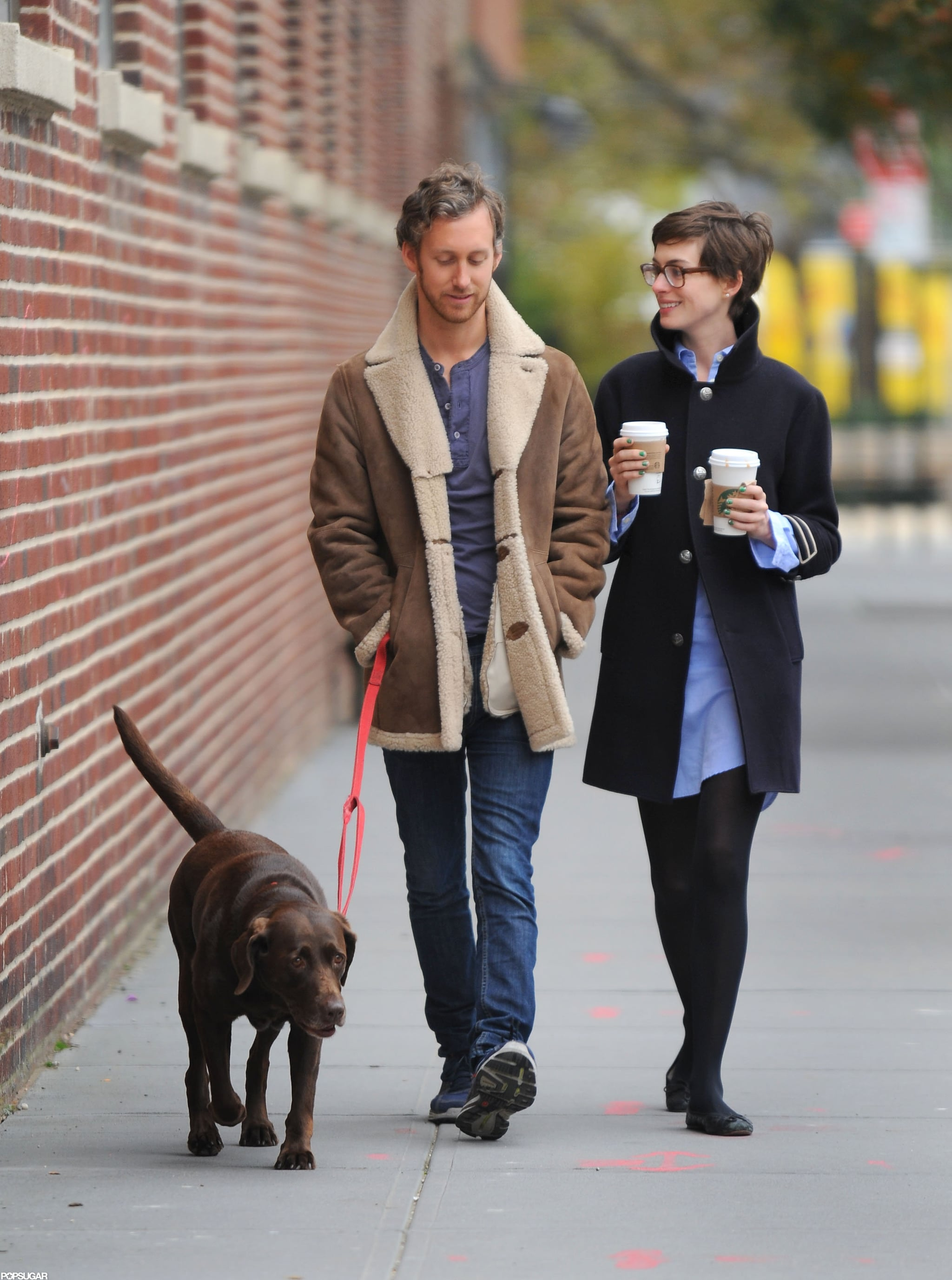 Anne Hathaway And Husband Adam Shulman Walked Their Dog Together