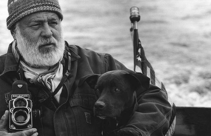 Bruce Weber And Animals   Best Friends Animal Society