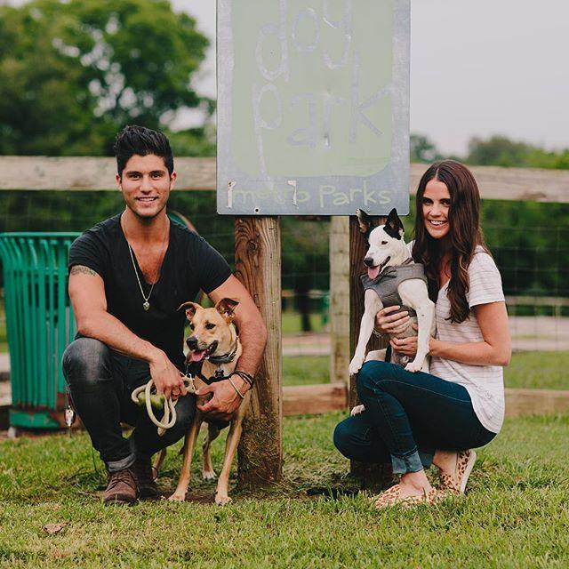 Dan + Dogs: The Adorable Way Dan Smyers Is Giving Back   Whiskey Riff