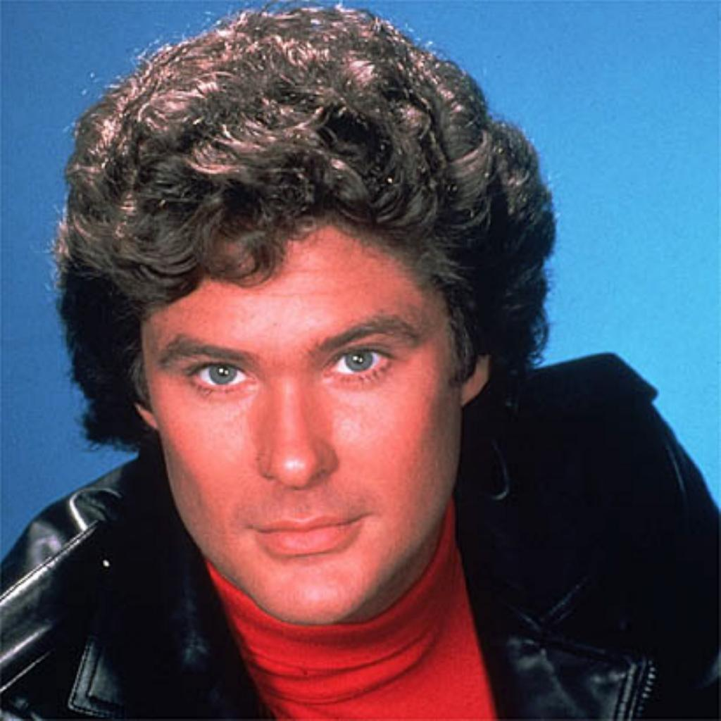 David Hasselhoff [The Hoff]   The Male Celebrity