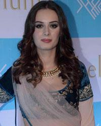 Evelyn Sharma Photos And Pictures