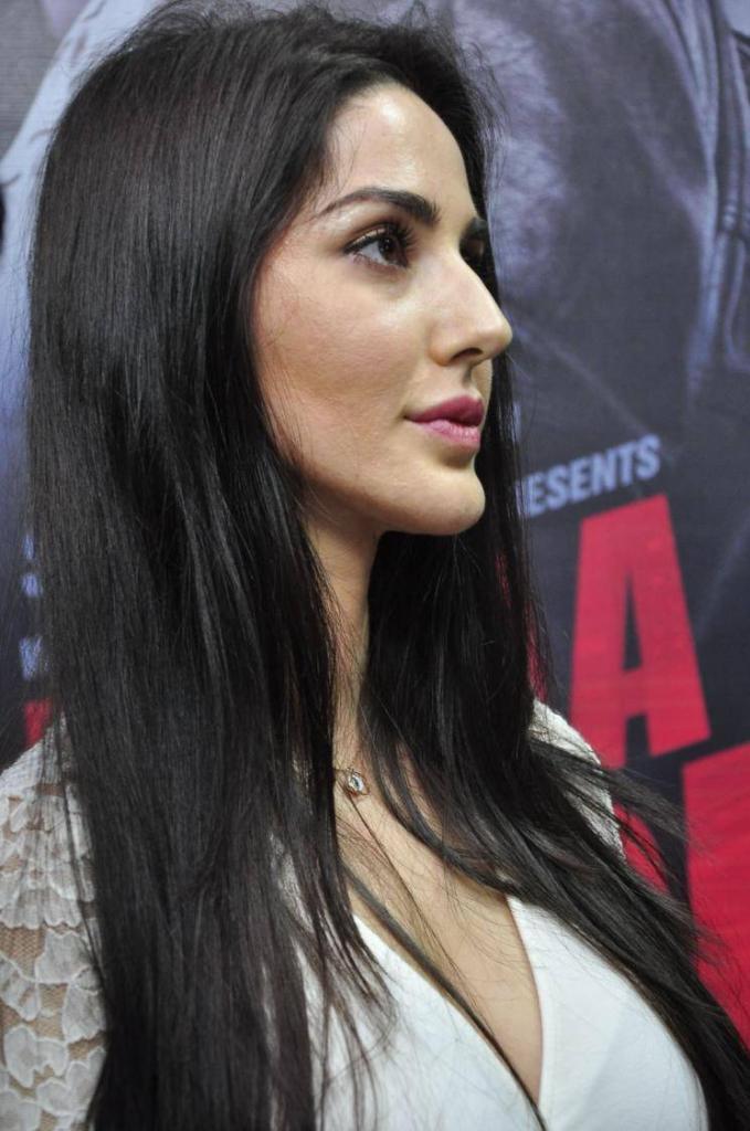 Farah Karimaee Stills At Teraa Surroor Movie Press Meet - Yadtek