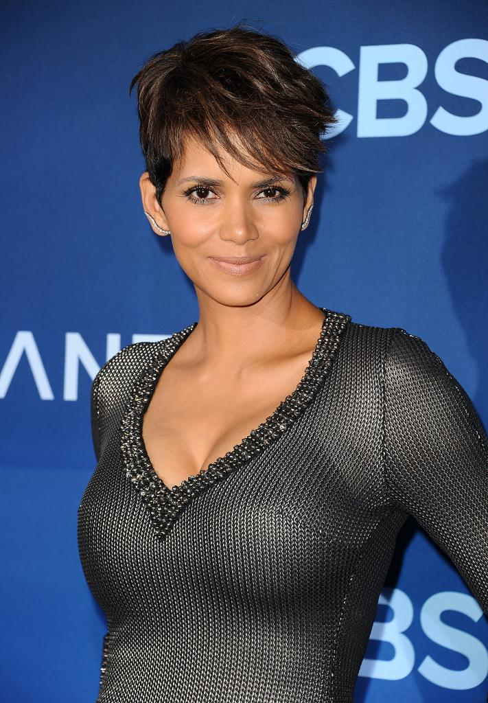 Halle Berry Attemps To Reduce Ex Gabriel Aubry's Child Support