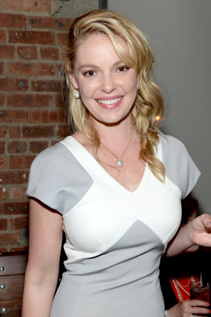 Katherine Heigl 'Grey's Anatomy' Exit: 'State Of Affairs' Actress