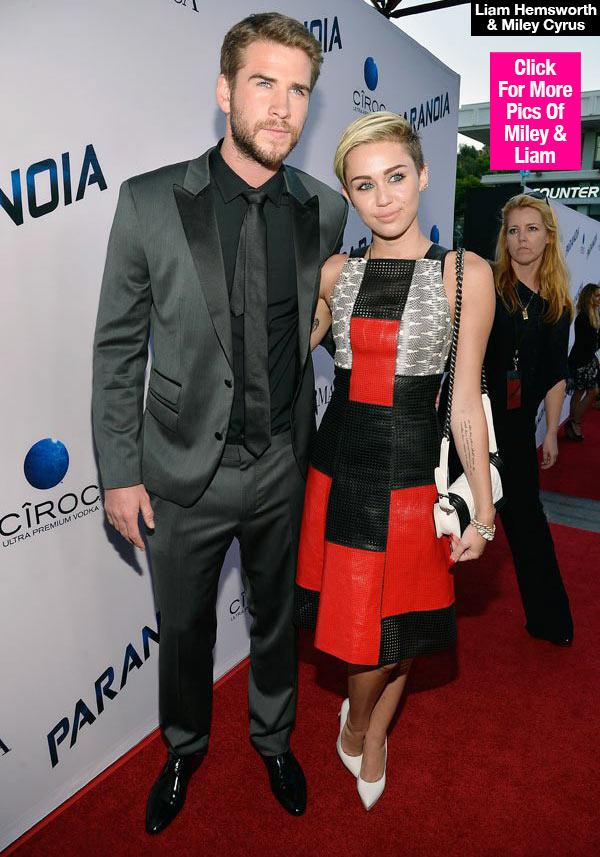 Liam Hemsworth & Miley Cyrus Back Together? Their Sweet Text Convo