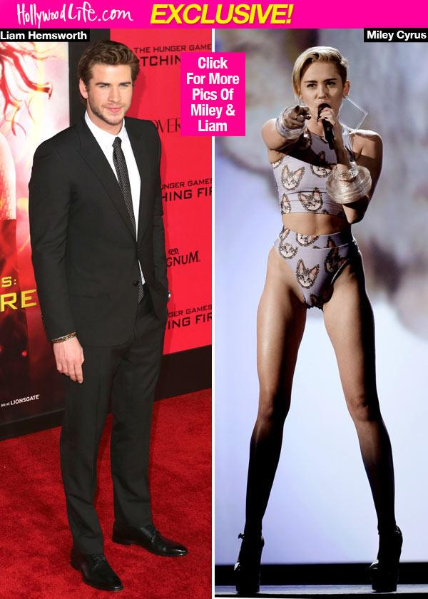 Liam Hemsworth & Miley Cyrus Fighting Over Wedding Party     She