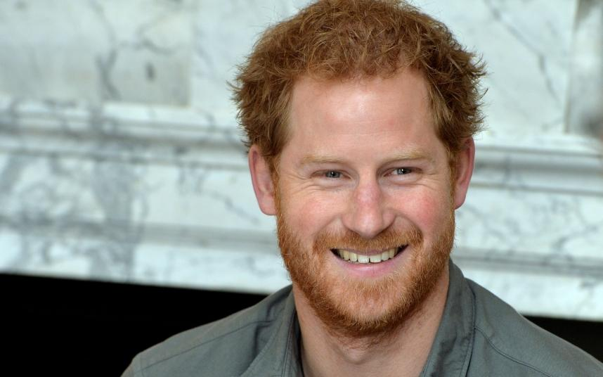 Prince Harry - Prince Harry Of Wales - Telegraph