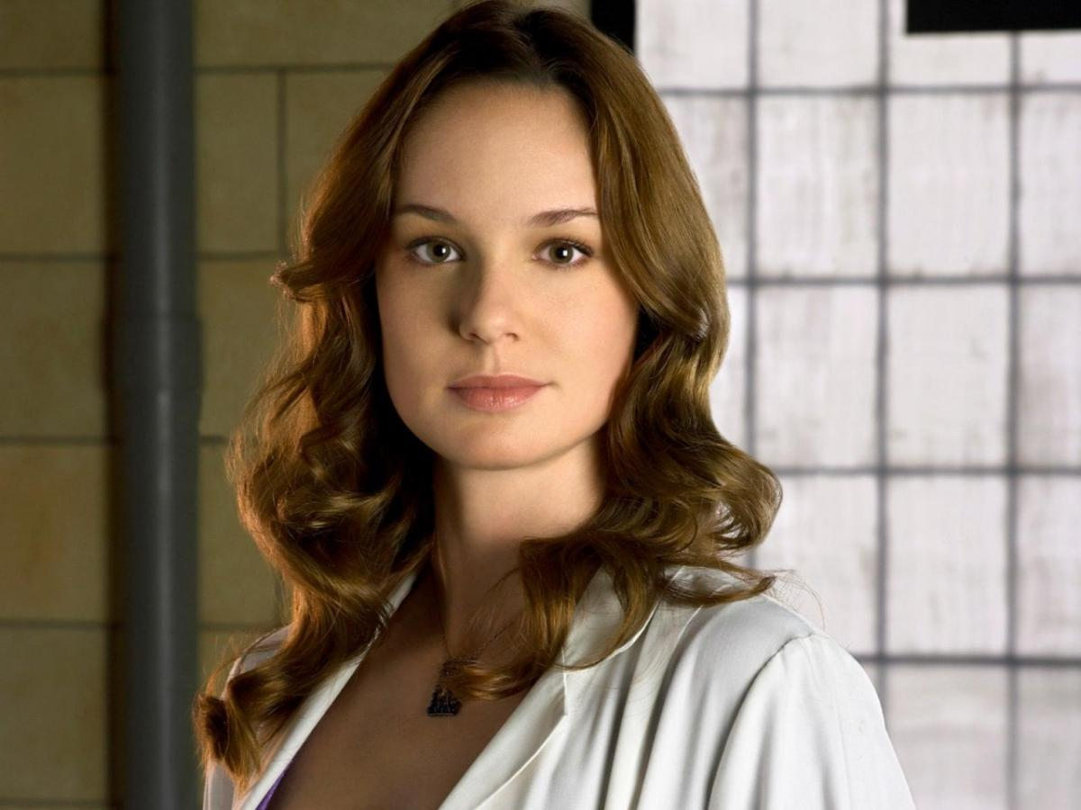 Sarah Wayne Callies Photo, Pics, Wallpaper - Photo