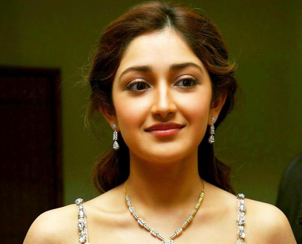 Sayesha Saigal Wiki-Biography-Age-Height-Weight& Much More