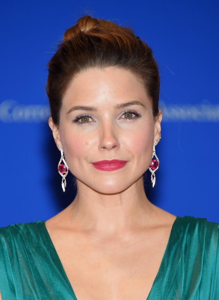 Sophia Bush Puts On Brave Face At White House Dinner After Ex