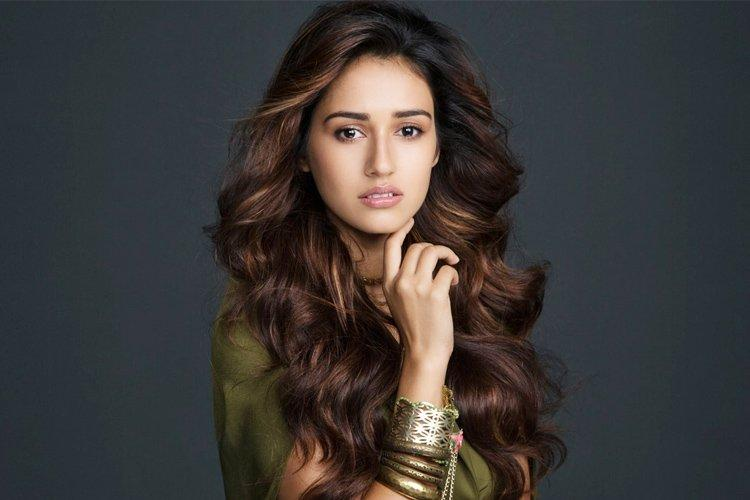 Disha Patani Height Age Education Model Boyfriend And Biography