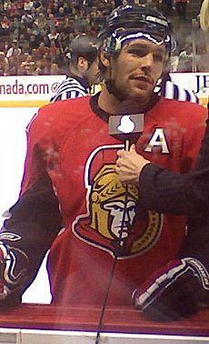 Mike Fisher ice Hockey Wikipedia
